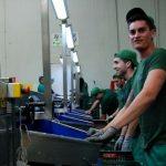 operarios produccion industria trabajo rosario